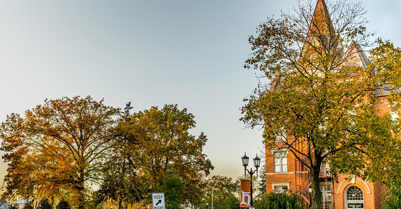 Campus foliage